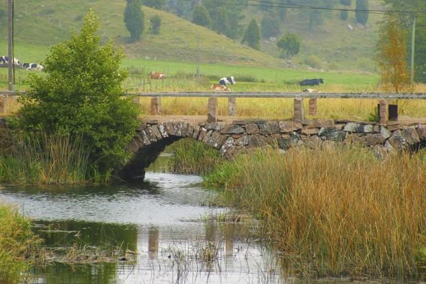 humla bro