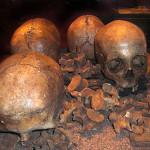 Fyra kranier från Slutarpsdösen
